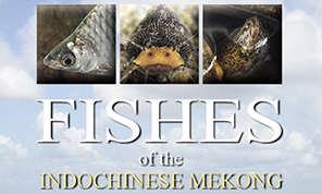 """banner for """"Fishes of Indochinese Mekong"""""""
